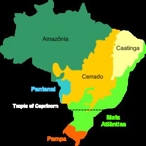 brasilien biome